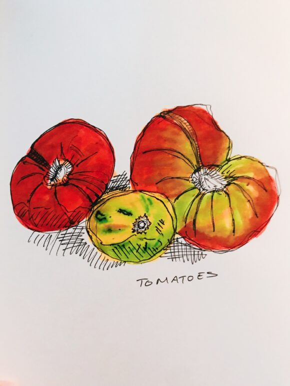 Illustration of tomatos from the market
